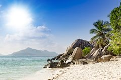Tropical beach palm trees Seychelles royalty free stock image