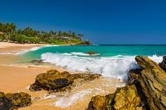Tropical beach with palm trees. Sri Lanka Stock Photo