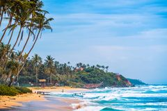 Tropical beach with palm trees. Sri Lanka Stock Images