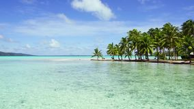 Tropical beach with palm trees and sunbeds. Travel, seascape and nature concept - tropical beach with palm trees and sunbeds in french polynesia stock video footage
