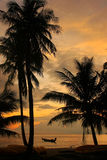 Tropical beach with palm trees at sunrise, Ang Thong National Ma Stock Photos
