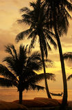 Tropical beach with palm trees at sunrise, Ang Thong National Ma Royalty Free Stock Photography