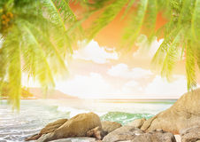Tropical beach royalty free stock photo