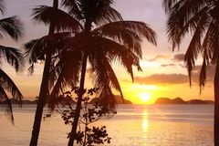 Tropical beach with palm trees at sunset, El Nido, Palawan island, the Philippines. Tropical beach with palm trees at sunset, El Nido, Palawan island in the Royalty Free Stock Images