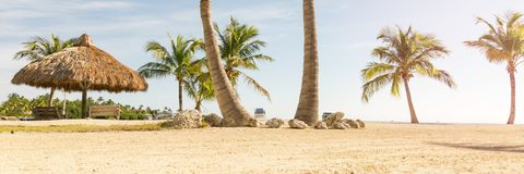 Tropical beach with palm trees. And sunny sky Royalty Free Stock Photos