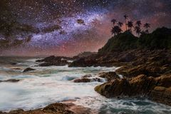 Tropical beach with palm trees under starry sky with Milky Way Stock Photography