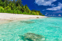 Tropical beach with palm trees on west side of Rarotonga, Cook I. Tropical swimming beach with palm trees on west side of Rarotonga, Cook Islands Stock Images