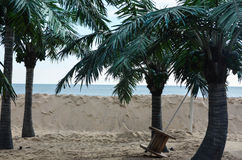 Tropical beach with palm trees Royalty Free Stock Images