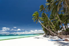 Tropical beach with palm and white sand Royalty Free Stock Photo