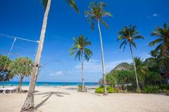 Tropical beach with palms Royalty Free Stock Photo