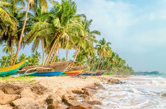 Tropical beach, palms and colorful fishing boats Stock Images