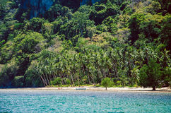Tropical beach with palms, El Nido Palawan,Philippines Southeast Asia.  Stock Photos