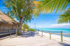 Tropical beach with palms and white sand on Stock Photo