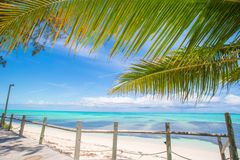 Tropical beach with palms and white sand on Royalty Free Stock Image