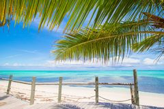 Tropical beach with palms and white sand on Royalty Free Stock Images