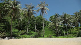 Tropical beach with palms and yellow sand. Tourist Paradise stock video footage