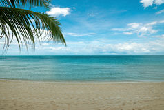 Tropical beach Royalty Free Stock Image