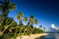 Tropical beach paradise Stock Image