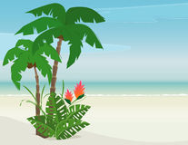 Tropical Beach Paradise Royalty Free Stock Photos