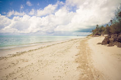 Tropical beach paradise. Exotic tropical island paradise in the evening Royalty Free Stock Photography