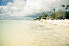 Tropical beach paradise. Exotic tropical island paradise in the evening Royalty Free Stock Photos