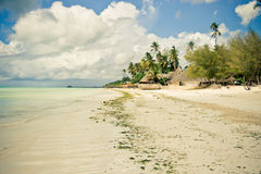 Tropical beach paradise. Exotic tropical island paradise in the evening Stock Photos
