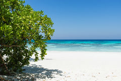 Tropical beach paradise full of crystal clear turquoise water and white sand bay Royalty Free Stock Image