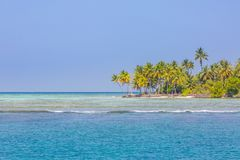 Lovely beach with turquoise water and green palm trees on a tropical island stock image