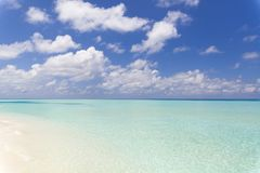 Tropical Beach in Paradise in Maldives. Tropical beach in paradise with clear crystal water in Maldives. Beautiful tones of turquoise in the sea. The sky is Royalty Free Stock Image