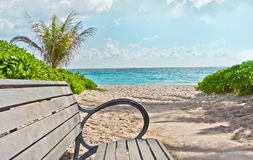 Tropical beach paradise in Miami beach Florida. Bench and pathway to the Tropical beach paradise in Miami beach Florida with palm trees and ocean Stock Photography