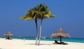Tropical beach. Parasols on a tropical beach Royalty Free Stock Photography