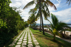 Tropical Beach path. With palm trees and parasols Royalty Free Stock Image
