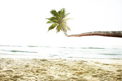 Tropical Beach Peaceful Vacations Summer Concept Royalty Free Stock Photo