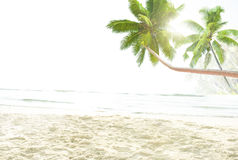 Tropical Beach Peaceful Vacations Summer Concept Stock Image