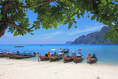 Tropical beach, Phiphi island, Thailand Royalty Free Stock Image