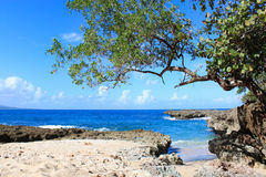 Tropical  beach Playa Blanca in Baracoa,  Cuba. Small famous tropical  beach Playa Blanca in Baracoa, Guantanamo province, Cuba Royalty Free Stock Photo