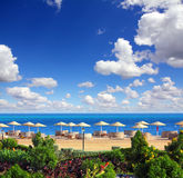 Tropical beach and Red Sea Stock Images