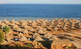 Tropical beach resort. Sea side Royalty Free Stock Photos
