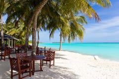 Tropical beach resort. A tropical beach resort with tables near the ocean Royalty Free Stock Photo