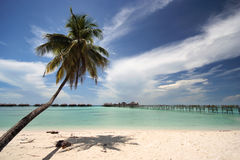 Tropical Beach With Resort Stock Photos