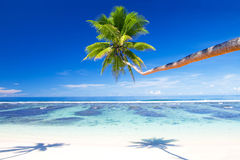 Tropical beach resort outdoors concept Royalty Free Stock Image
