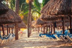 Tropical Beach Resort in Punta Cana, Dominican Republic Stock Photography