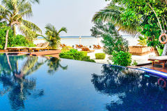 Tropical beach resort swimming pool. In Maldives Royalty Free Stock Photos