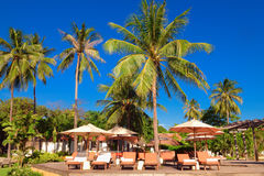 Tropical beach resort. Tanning beds and parasols beside a pool in a tropical beach resort stock photos