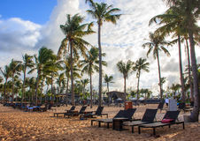 Tropical beach resort and villa with deckchairs, white sand and palm trees Royalty Free Stock Photos