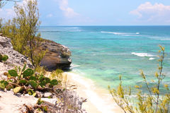Tropical beach. rocky shore with turquoise ocean and cactus. Grand Turk island, The Bahamas. Tropical beach. beautiful rocky shore with turquoise ocean and royalty free stock photo