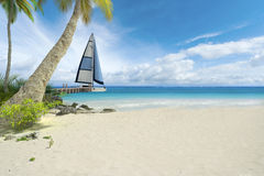 Tropical beach and sailboat Stock Photography