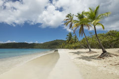 Tropical beach in Saint Thomas Royalty Free Stock Image