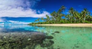 Tropical beach on Samoa Island with palm trees Royalty Free Stock Photos