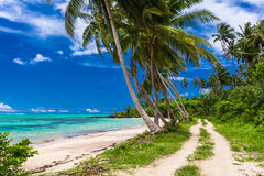 Tropical beach on Samoa Island with palm trees and road. Tropical beach on Samoa Island with palm trees and dirt road Royalty Free Stock Photography
